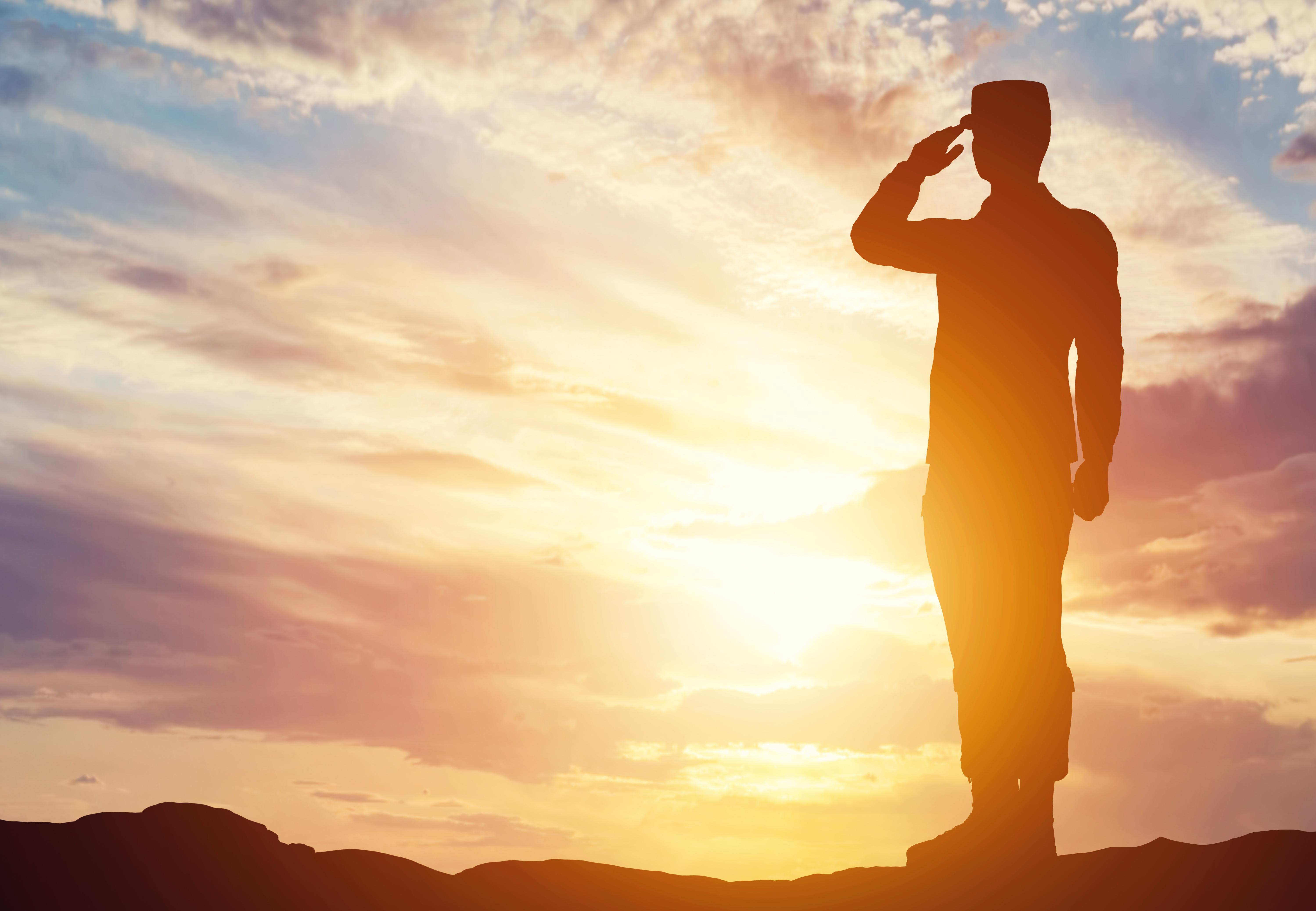 Veterans Needs Assessment Survey'
